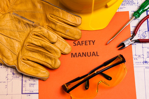 Environment, Health, and Safety Management System Standards